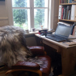 new chair in my office, autumn 2013